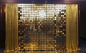 золотая фотозона из паеток киев
