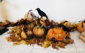 оформить хэллоуин halloween киев