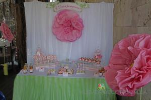 кенди бар на день рождения Принцессы